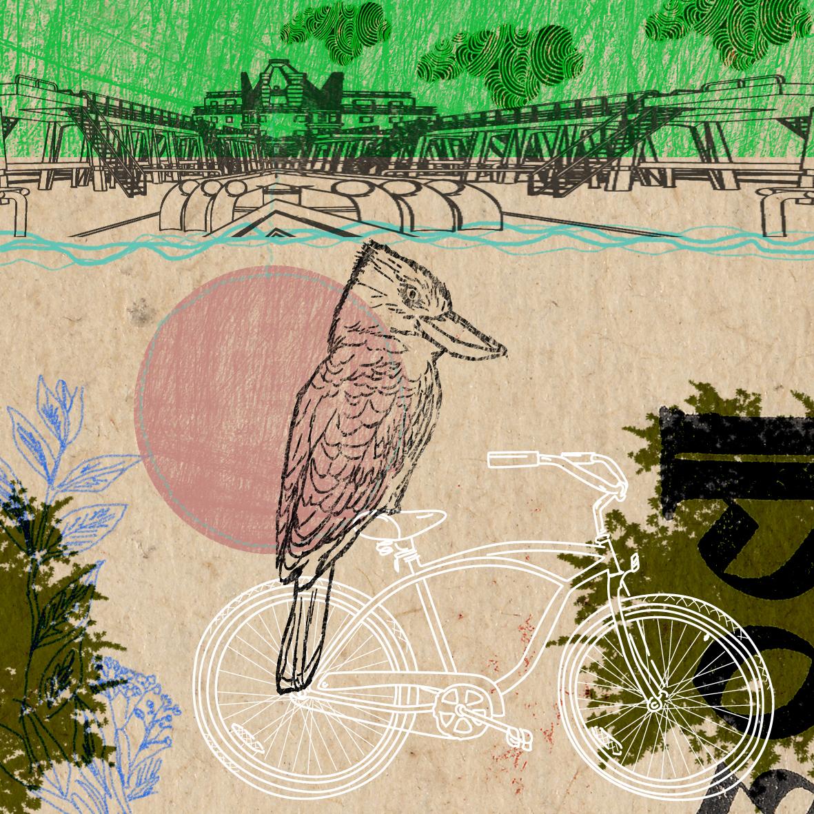 Vogel-fährt-Rad-10x10